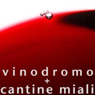 Vinodromo – Miali